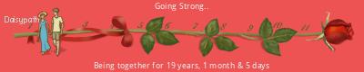 Daisypath Anniversary (3GQ0)