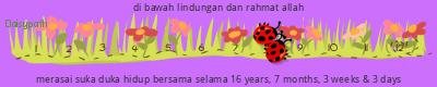 Daisypath Anniversary (JF1B)