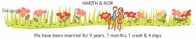 Daisypath Anniversary (vXY5)