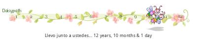 tickers aniversario Daisypath